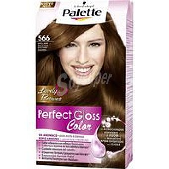 PALETTE Perfect Gloss Tinte avellana N.566 Caja 1 unid