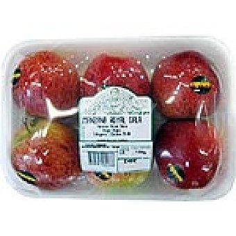 Royal Manzanas gala peso aproximado bandeja 1,2 kg 6 unidades