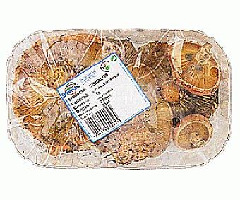 HONGOS Níscalos Tarrina (lactarius Deliciosus) Tarrina de 250 Gramos