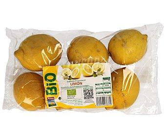 Auchan Limón bio Bolsa de 600 g