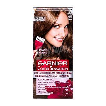 Color Sensation Garnier Tinte rubio oscuro nº 6.0 coloración permanente intensa caja 1 unidad pincel gratis Caja 1 ud