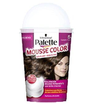 Palette Schwarzkopf Mousse Color 5 Castaño Claro 1 ud