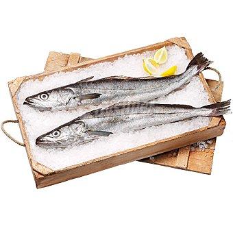 Pescadilla de Pincho del Norte Peso Aproximado Unidad 1,5 kg