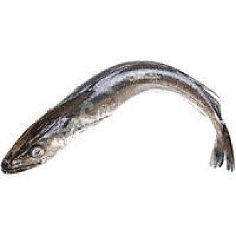 Pescadilla Fina - Peso Aproximado Pieza 1,0 kg
