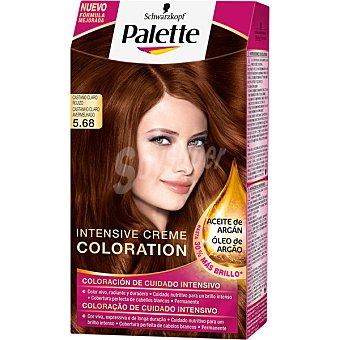 Palette Schwarzkopf Tinte Intense Color Cream Castaño claro rojizo nº 5.68 coloración de cuidado intensivo  1 unidad