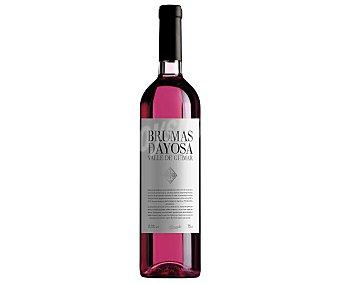 Brumas de Ayosa Vino rosado con denominación de origen Valle del Güimar Botella de 75 cl