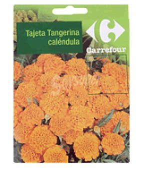 Carrefour Tajeta tangerina