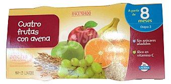 HACENDADO Tarrito cuatro frutas con avena a partir de 8 meses 2 unidades de 200 g