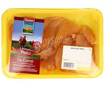 ALCAMPO PRODUCCIÓN CONTROLADA Bandeja de solomillos de pollo de corral 1400 gramos aproximados