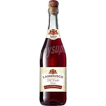 CALDIROLA Lambrusco vino rosado Dell 'Emilia Italia  botella 75 cl