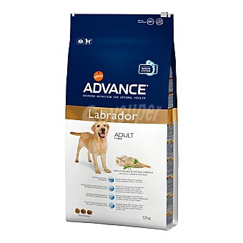 AFFINITY ADVANCE ADULT LABRADOR Pienso para perros adultos Labrador Advance pollo y cereales 12 Kg 12 Kg