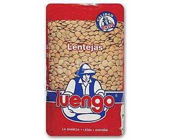 Luengo Lenteja castellana de León Paquete 1 kg