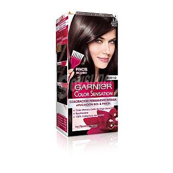 Color Sensation Garnier Tinte castaño oscuro Nº 3.0 u