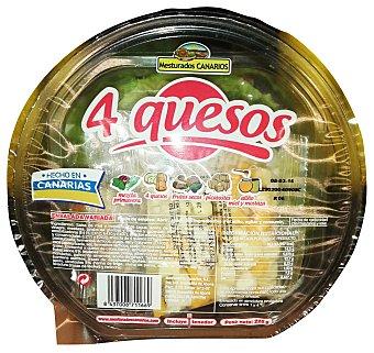 MESTURADOS CANARIOS Ensalada 4 quesos (lechuga batavia, apolo, iceberg, radicchio, mezcla 4 quesos,frutos secos,picatostes,salsa miel I mostaza Y tenedor) Tarrina 225 g