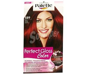 PALETTE GLOSS COLOR Tinte color Rojo Pasión Nº 589, sin amoníaco 1 Unidad