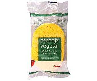 Auchan Esponja bebé Vegetal Fibra Natural 1 Unidad
