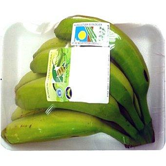Plátanos ecológicos peso aproximado Bandeja 800 g