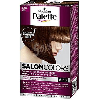 Palette Schwarzkopf Tinte castaño claro avellana nº 5.68 Salon Colors 1 Unidad