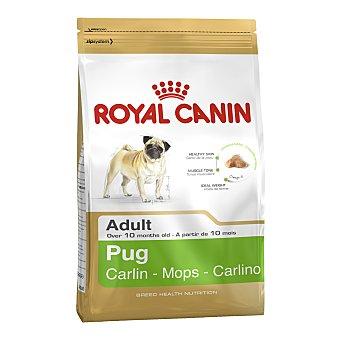 Royal Canin Royal Canin Carlino desde los 10 meses 1,5 kg