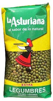 La Asturiana Soja verde grano Paquete de 500 g