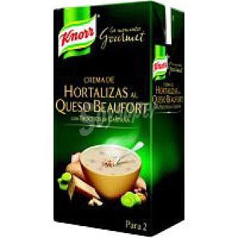Knorr Crema Hortaliza Gourmet Brik 500 ml