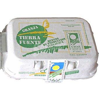 TIERRA FUENTE Huevos ecologicos Envase 6 unidades