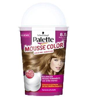 Palette Mousse Color 8.5 Rubio Claro Dorado 1 ud