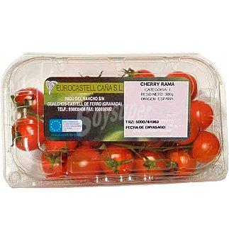 Rama Tomate cherry 300 G