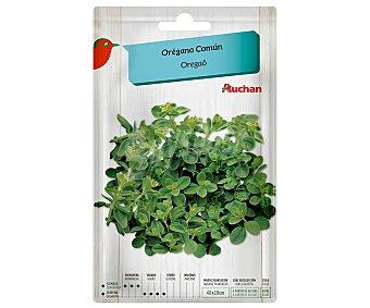 Producto Alcampo Sobre de semillas para plantar orégano común alcampo