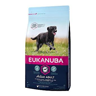 Eukanuba Eukanuba Active Adult razas grandes con pollo 3 kg