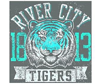 IMAGINE Cuadro de con el escudo vintage de los Tigers de River City y dimensiones de 28x28 centímetros 1 unidad