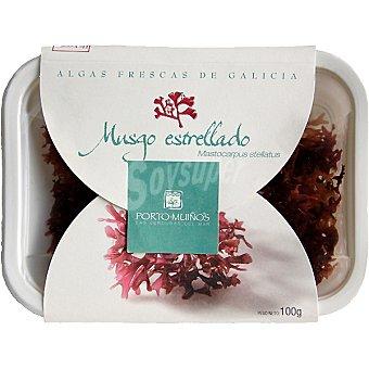 Porto Muiños Algas frescas de Galicia musgo estrellado Tarrina 200 g