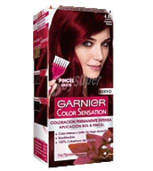 Color Sensation Garnier Tinte tono nº 4,6 1 ud