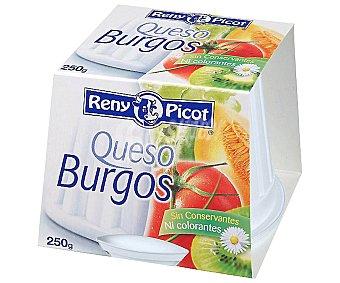Reny Picot Queso fresco sin sal y con fibra Tarrina 250 Gramos