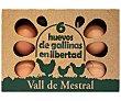Huevos de diferentes calibres de gallinas en libertad 6 uds Vall de mestral