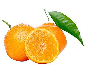 FRUTA Naranja Zumo Ecológica Malla 2 Kilogramos