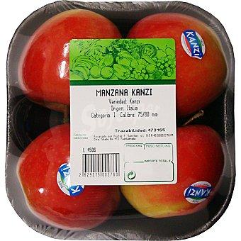 Manzana kanzi peso aproximado Bandeja 800 g