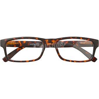 Loring hannibal laguna Gafas de lectura Mod Gante +150 caja 1 unidad 1 unidad