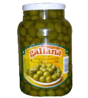 Galiana Aceitunas partida 2,5 kg