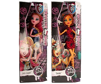 Monster High Surtido de muñeca Excursión Monstruosa, incluye muñeca y accesorios 1 unidad