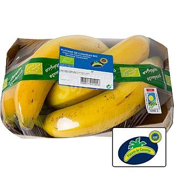 Agrorigen Plátano de Canarias ecológico Bandeja de 800 g peso aproximado