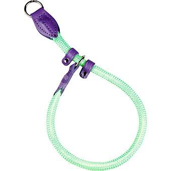 Arppe collar para perro modelo Bellucci color verde y morado medidas 40 cm x 1,4 cm  1 unidad