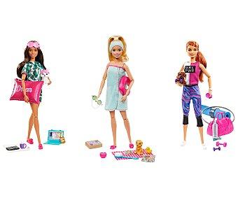 Barbie Muñeca bienestar con accesorios barbie.