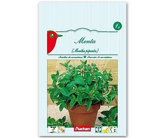 Auchan Semillas para plantar menta 1 Gramo
