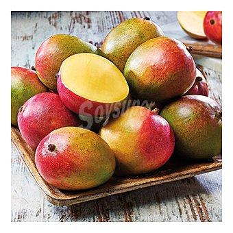 Variedad Mango premium. Palmer. Madurado en árbol Bandeja de 1000.0 g.