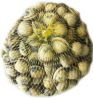 Berberechos frescos en Malla de 1 kg