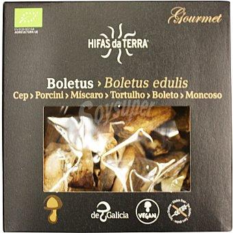 Hifas da terra Boletus edulis ecologico bolsa 30 g Bolsa 30 g