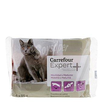 Carrefour Comida para gatos movilidad y madurez Pack 4x85 gr