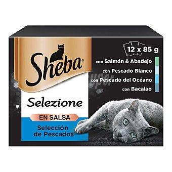 Sheba Comida para gatos gelatina selección pescados 12 uds. x 85 g