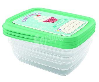 Jobgar Conjunto de 3 recipientes de plástico rectangulares con tapa hermética decorada color verde, 1 litro de capacidad 1 unidad
